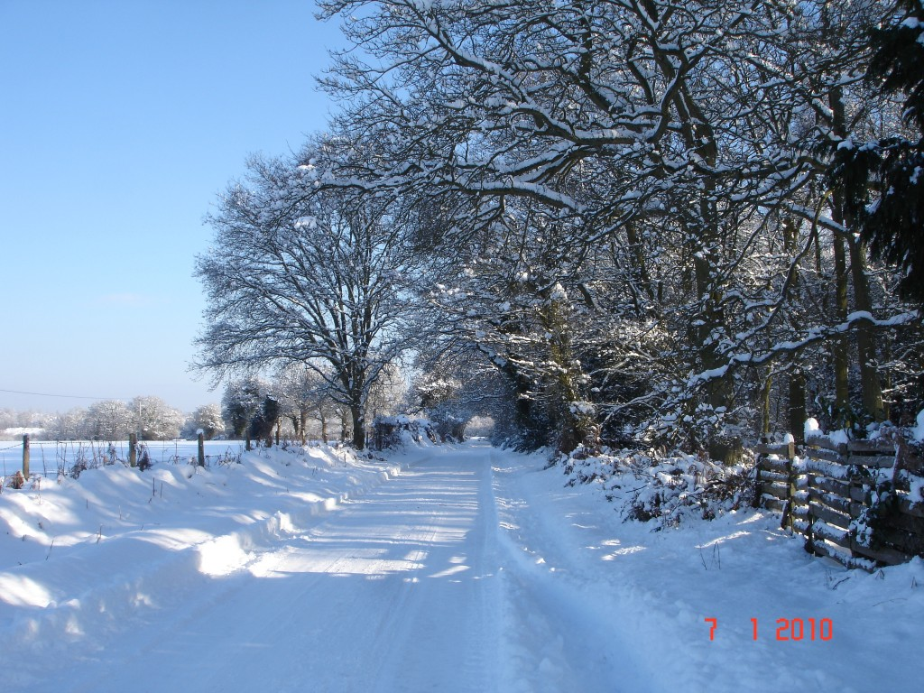 Winter in Winchfield The Hurst 2010