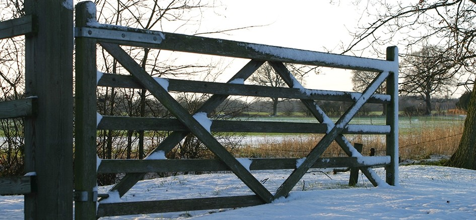 Winchfield Snow Dec 2009
