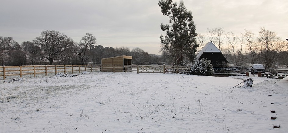 Winchfield Snow Feb 2012